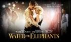 第八十二篇    电影《大象的眼泪》