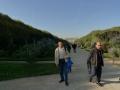 植物园  科学节