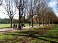 推荐大巴黎可以徒步的森林,记得收藏哦