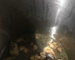 黑暗料理之猪蹄~