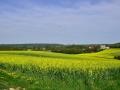 4月22日      77省Longueville16公里徒步随拍。