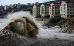 意大利北部华侨华人经贸总会为温州台风灾区捐款献爱心