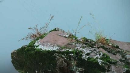 山青水秀--东岩