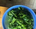 物为希为贵最后一歺,下半再见我的绿色食品芥菜。