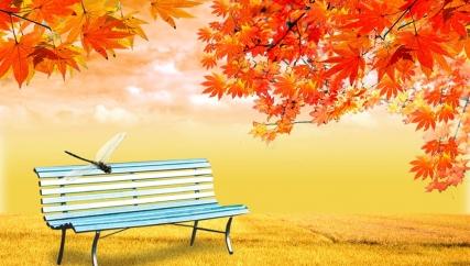 新天净沙:深秋冷风落花,飘零孤单思家