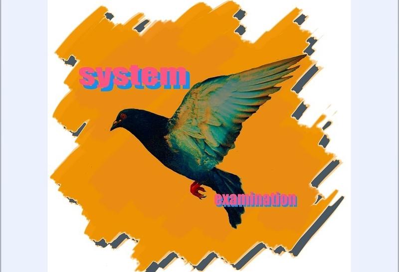 平面广告设计,专业p图,logo,名片,书籍海报排版,装饰画
