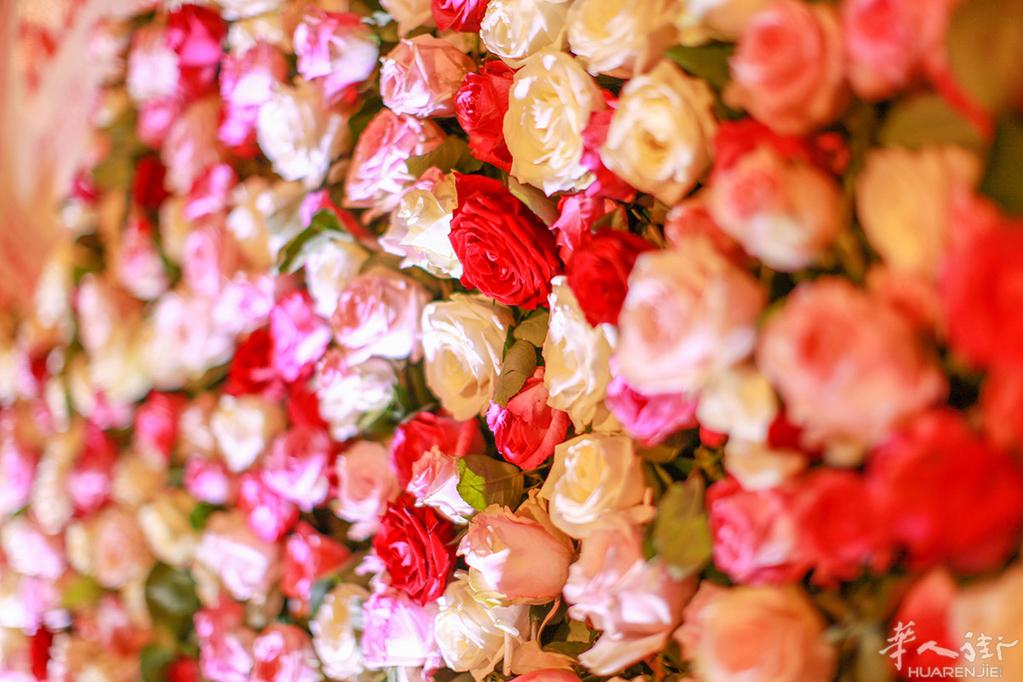 纯鲜花墙 蒙娜莫尔 高端婚礼装饰