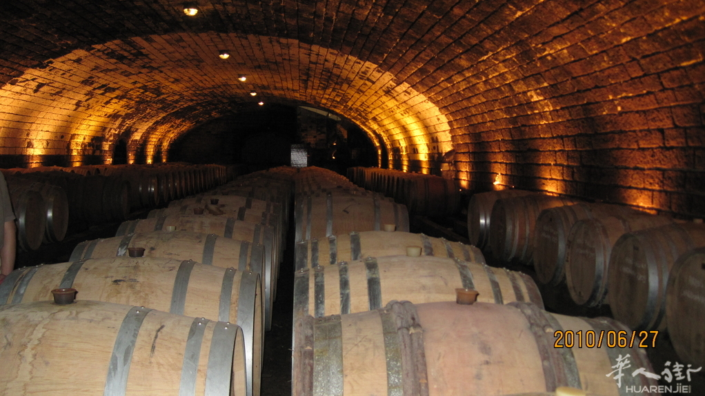 法国东部第戎,博纳,酒窖一日游