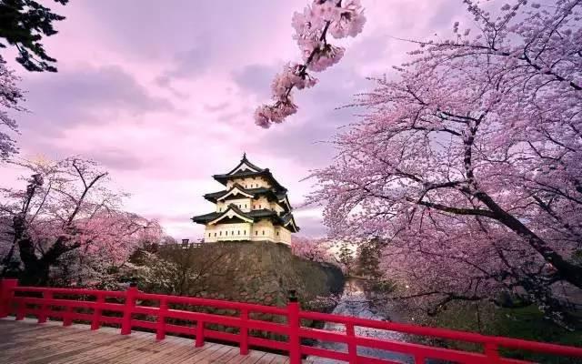 今年二月初要去日本旅游,穿什么衣服合适?单裤