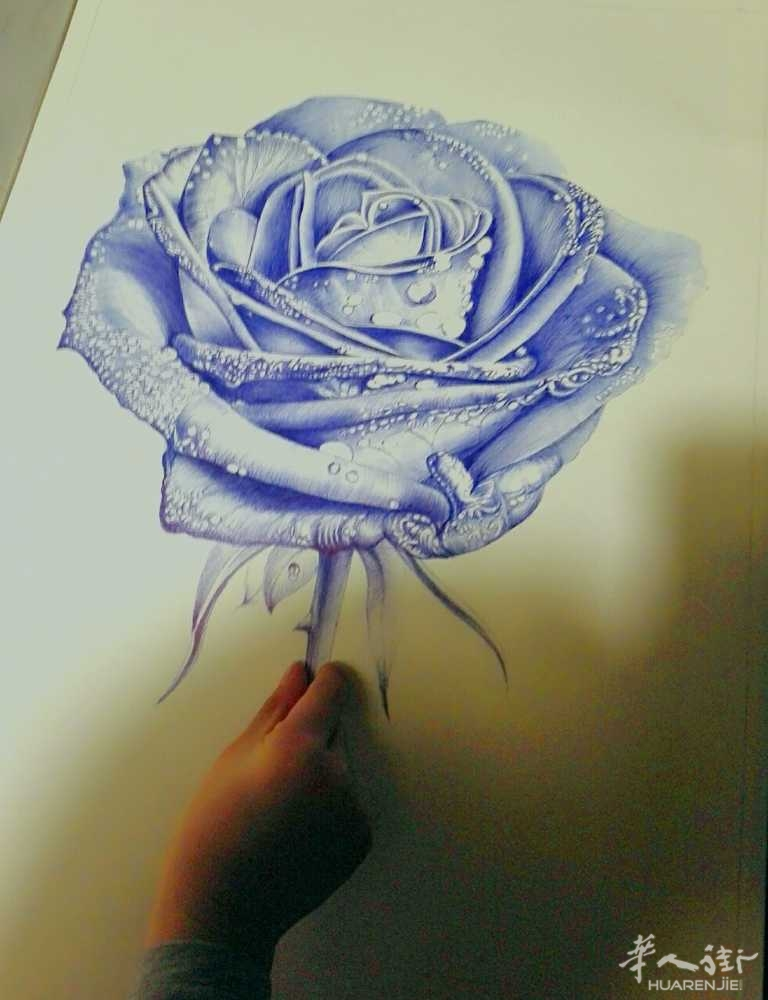 圆珠笔画------蓝色妖姬