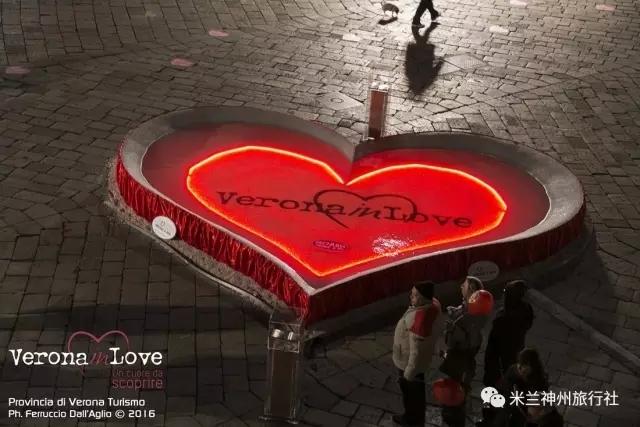 cut in love曲谱