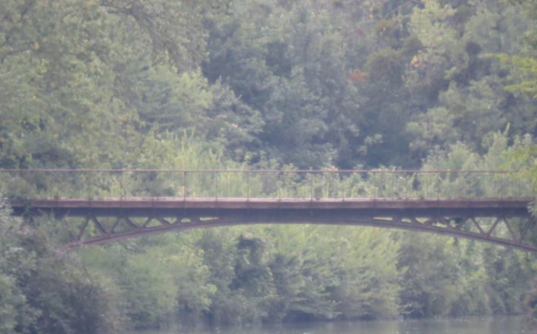 管住熊孩子,93省15岁男孩跳桥落水溺亡