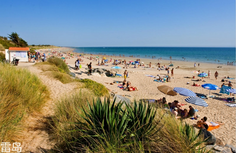 ile-de-re-5-km-de-plages-de-sable-fin-office-de-tourisme-de-la-couarde-sur-mer.jpg