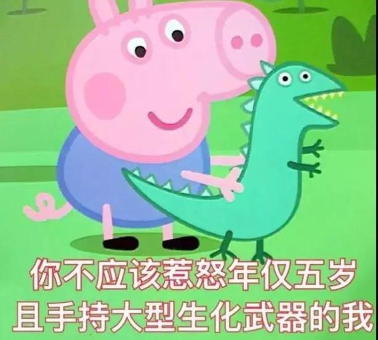 笑着可爱的猪的头像