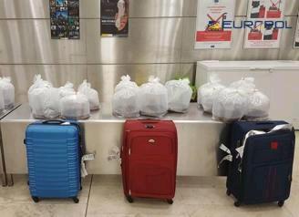 中国鳗鱼幼苗走私团伙,瓦伦西亚机场遭警