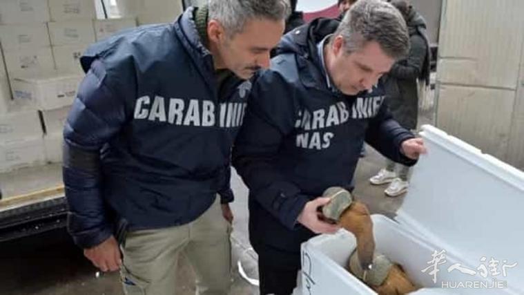 carabinieri-nas-2.jpg