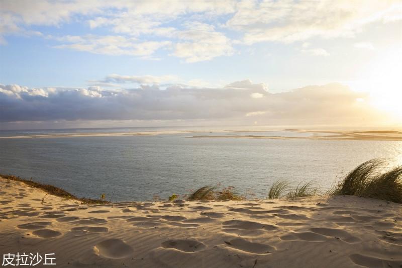 dune-herbe-pilat_istock_horstgerlach_meitu_2.jpg