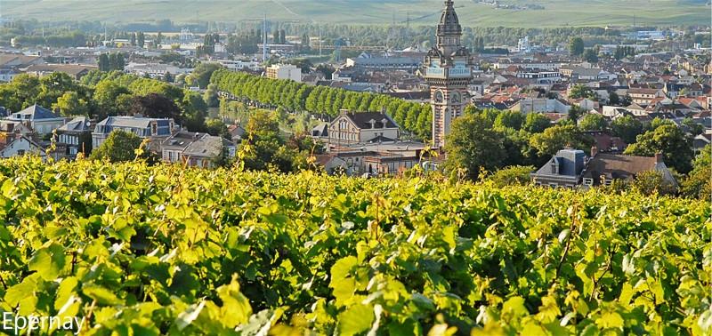 vue-haute-epernay-et-ses-vignes_meitu_5.jpg