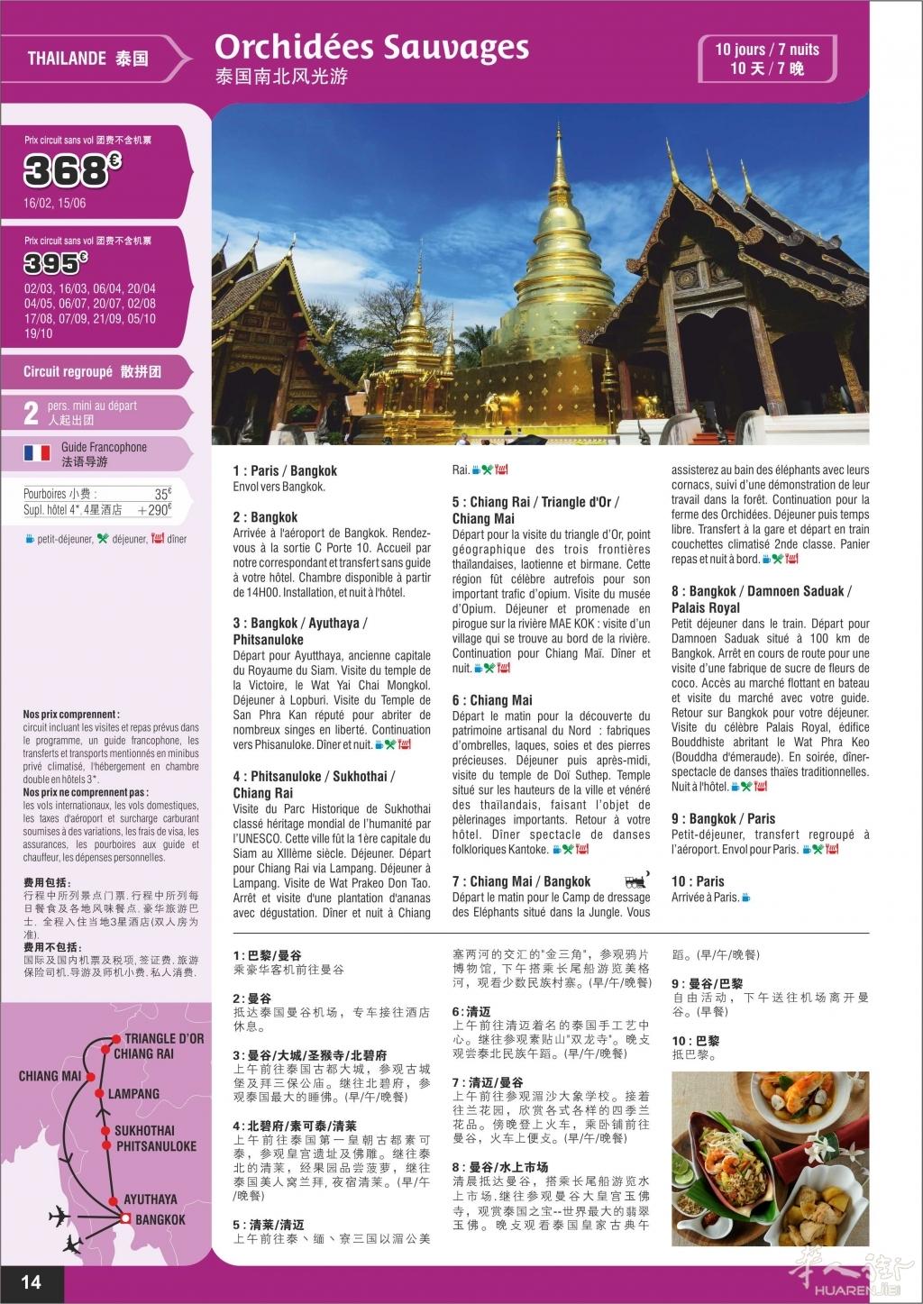 p14-Thailande Orchidées Sauvages-v06.jpg