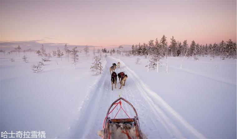 Finland_Husky_Ranch_Lapland.jpg