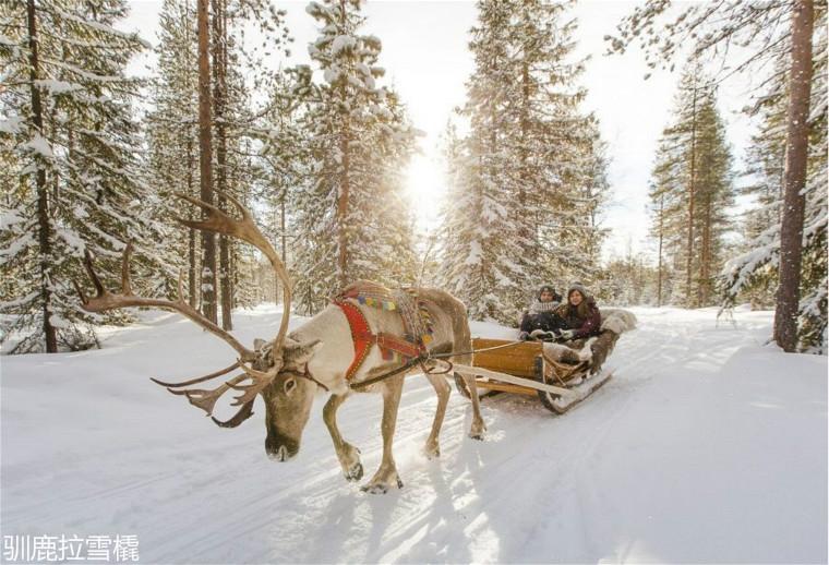 reindeer-rides-in-santa-claus-village-in-rovaniemi-in-lapland-900x614.jpg