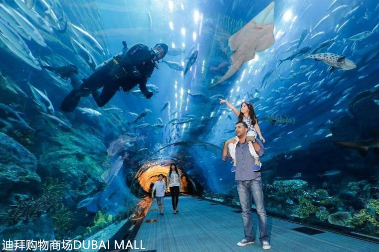 dubai-aquarium-and-underwater-zoo-dubai-2.jpg