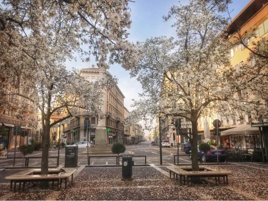 疫情之下的市中心小广场(帕多瓦)
