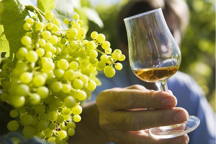 cognac_verre_photo_-_charente_tourisme_fu_ben_.jpg