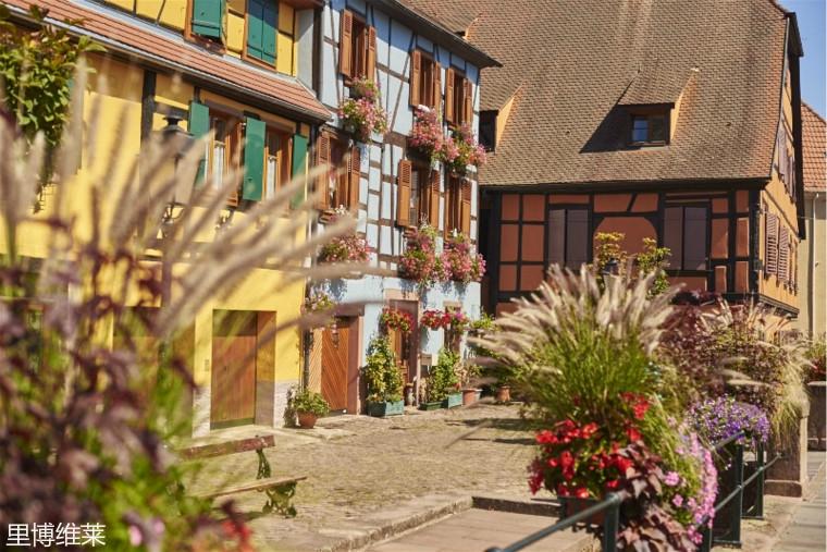 Alsace-Ribeauville066_meitu_25.jpg