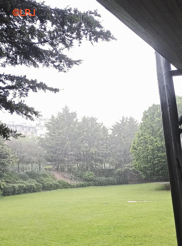 躲雨••••••••••••