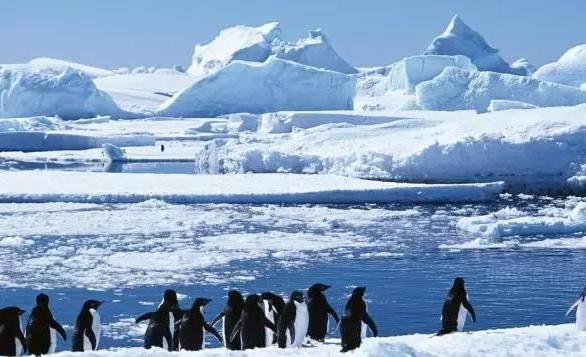 南极洲海域冰层面积达38年来最低水平