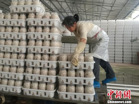 5月中国经济运行稳中向好 房地产开发投资增速放缓